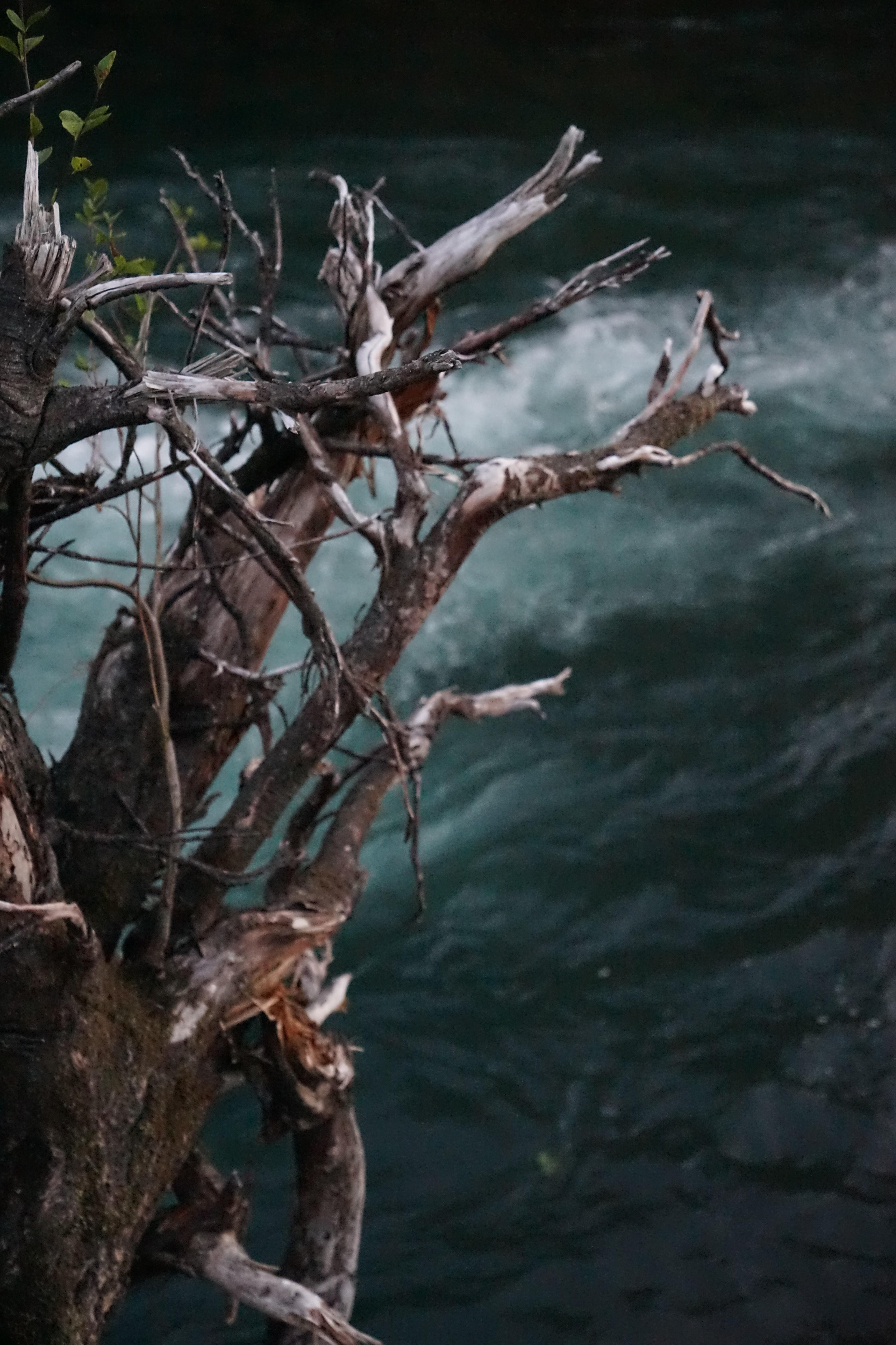 glacier, run off, glacier water, white salmon, columbia river gorge