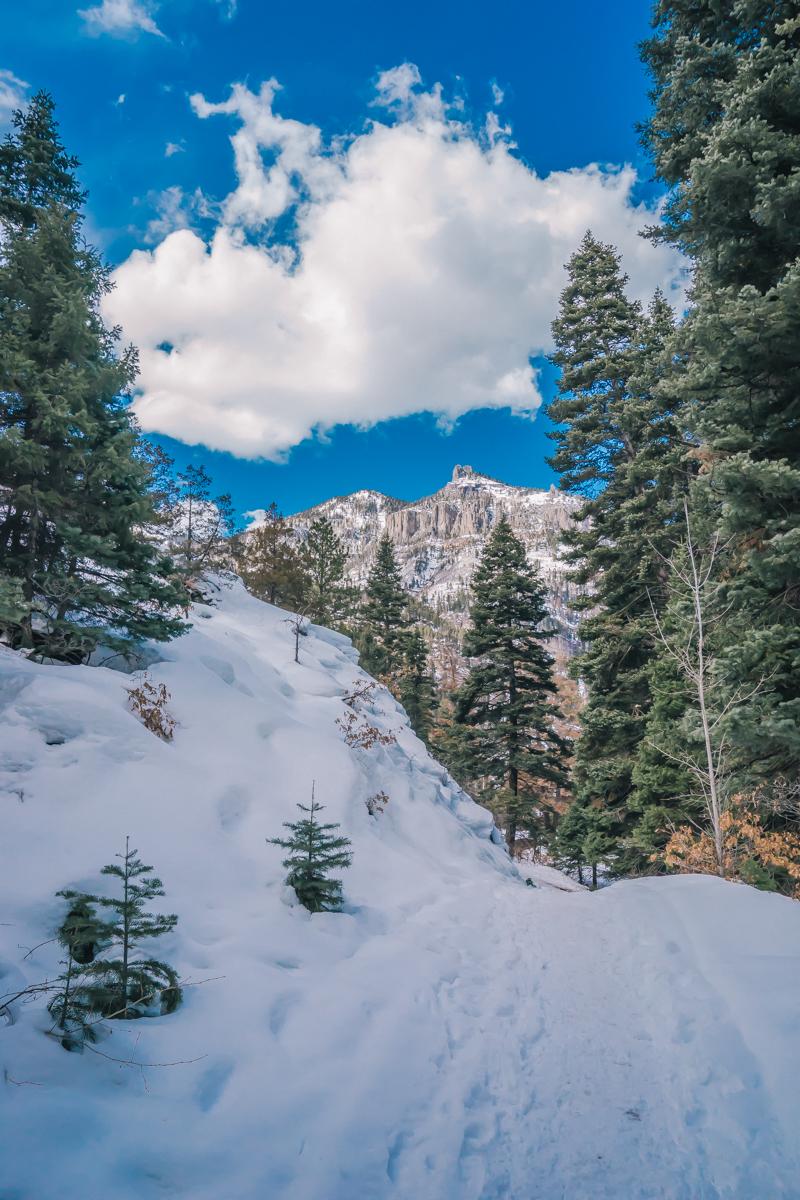 Ouray Colorado ice climbing adventure trip-42